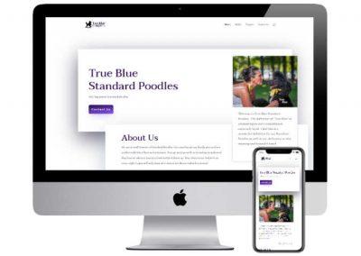 True Blue Standard Poodles